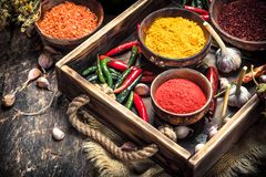 Various ground spices and herbs in an old tray. stock photo