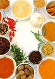 Various ground and whole spice. S in bowls stock photography