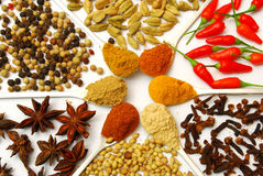 Various ground and whole spice in pattern Stock Images