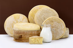 Various hard parmesan cheese on the white table with milk Royalty Free Stock Photo