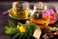 Various Herbal tisane tea with hibiscus Royalty Free Stock Image