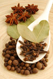 Various herbs. Allspice, bay leaf, aniseed and clove on a wooden spoon stock photography