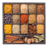 Various herbs and powder spices isolated Stock Images