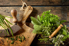 Various herbs in preparation on cutting board Stock Photos