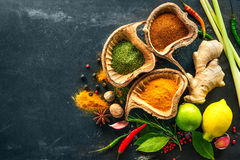 Various herbs and spices Royalty Free Stock Photo