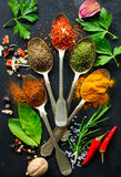 Various herbs and spices Royalty Free Stock Images
