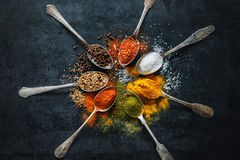 Various herbs and spices Stock Photos