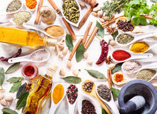 Various herbs, spices and vegetables for cooking Stock Photography