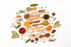Various herbs and spices on wooden spoons. thyme, cinnamon, anis Royalty Free Stock Photography