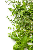 Various herbs. On white background Stock Photo