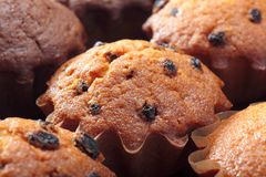 Various home made muffins Royalty Free Stock Image