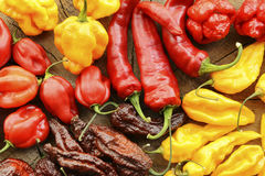 Various hot peppers Stock Photo