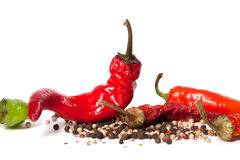 Various of hot peppers on white background Royalty Free Stock Images