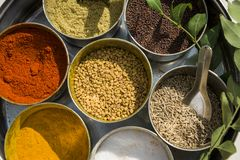 Various indian spices in metal bowls on try Royalty Free Stock Photo