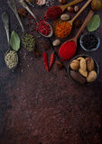 Various indian spices, nuts and herbs in wooden spoons and metal bowls Royalty Free Stock Photography