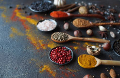Various indian spices in wooden spoons and metal bowls and nuts on dark stone table. Colorful spices,selective focus Royalty Free Stock Image
