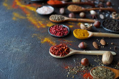 Various indian spices in wooden spoons and metal bowls and nuts on dark stone table. Colorful spices, selective focus Stock Image