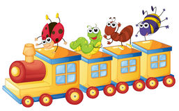 Various insects on train Stock Images