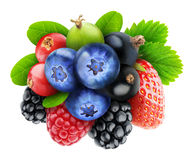 Various isolated berries Royalty Free Stock Image