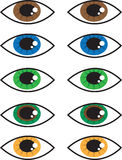 Eye Colors Stock Photos