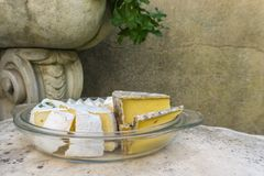 Various kind of cheese served on stone table in vintage exterior stock image