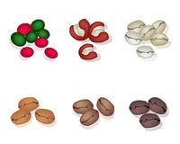 Various Kind of Coffee Beans on White Background Stock Images