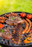 Various kind of meat served on grill Stock Photography