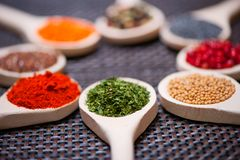 Various kind of spices on wooden spoon -  detail of dried parsley Royalty Free Stock Photography