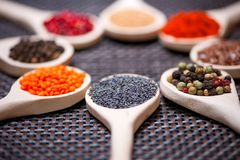 Various kind of spices on wooden spoon -  detail of poppy seeds Stock Image