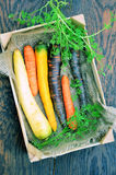 Various kinds of carrots Royalty Free Stock Photography