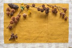 Various kinds of cones from all over the world on a beige cloth with space for inscription Stock Photo