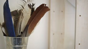 Various kinds of feathers stands in glass cup in workshop stock video
