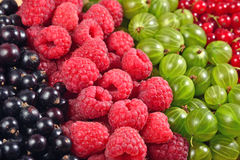 Various kinds of fresh berries close up as background Stock Photo