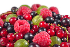 Various kinds of fresh berries close up on a white Royalty Free Stock Photo