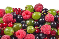 Various kinds of fresh berries close up on a white Stock Image