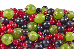Various kinds of fresh berries close up on a white Royalty Free Stock Photos