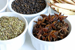 Various kinds of herbal spices stock photos