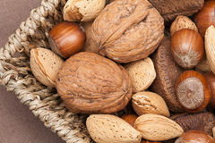 Various kinds of nuts. Royalty Free Stock Image