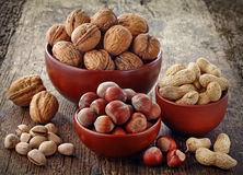 Various kinds of nuts Stock Photography
