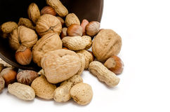 Various kinds of nuts Stock Images