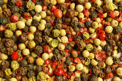 Various kinds of pepper. Various kinds of seeds of pepper background Royalty Free Stock Photography