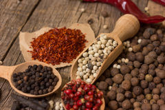 Various kinds of pepper Royalty Free Stock Photography
