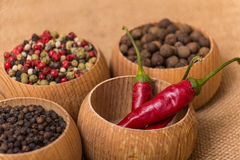 Various kinds of pepper Royalty Free Stock Photos