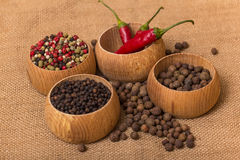 Various kinds of pepper Stock Image