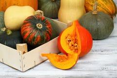 Various kinds of pumpkins Stock Photography