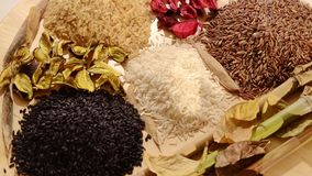 Various kinds of rice. Cereal, various kinds of rice stock footage