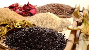 Various kinds of rice. Cereal, various kinds of rice stock video footage