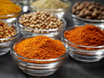 Various kinds of spices Stock Image