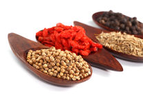 Various kinds of spices - Coriander Seed, Goji Berry,Cumin,Black Royalty Free Stock Photography