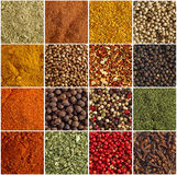 Various kinds of spices Royalty Free Stock Photo
